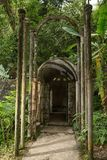 在爱德华詹姆斯的混凝土结构在Xilitla墨西哥从事园艺 免版税库存照片
