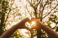 在爱心脏和阳光形状的手  免版税库存图片