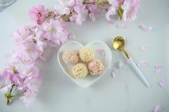 在爱心脏形状盘的纵容白色块菌状巧克力 免版税库存照片