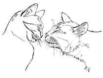 在爱猫的夫妇 免版税库存照片