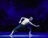 在爱现代舞蹈的苍鹰树 库存照片