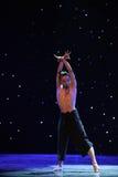 在爱现代舞蹈的苍鹰树 图库摄影