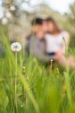 在爱的一对年轻夫妇坐草草甸,亲吻 库存照片