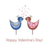 在爱的两只五颜六色的鸟 免版税库存照片