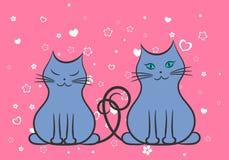 在爱的两只猫,等高图画 皇族释放例证
