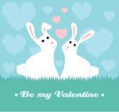 在爱的兔宝宝 免版税库存照片