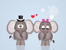在爱的大象 免版税图库摄影
