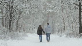 在爱的夫妇在一个多雪的森林里 股票视频