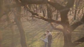 在爱的夫妇在森林里走在日落 影视素材
