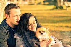 在爱的夫妇获得与他们的狗的乐趣在公园-青年人 库存照片