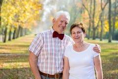 在爱的婚姻 库存图片