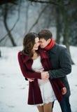 在爱的有吸引力的年轻夫妇在多雪的公园 免版税库存图片