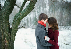 在爱的有吸引力的年轻夫妇在多雪的公园 免版税库存照片