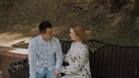 在爱的美好的愉快的夫妇坐一条长凳在公园和谈 股票视频