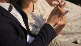 在爱的肉欲的年轻夫妇在背景草甸 股票视频