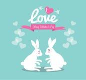 在爱的逗人喜爱的夫妇兔子。 免版税库存照片