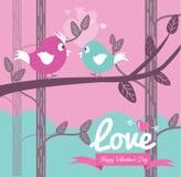 在爱的逗人喜爱的夫妇鸟。 免版税库存照片