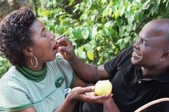 在爱野餐的年轻夫妇 免版税库存图片