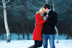 在爱,柔软的可爱的夫妇 库存照片