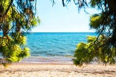 在爱琴海的看法从沙滩通过绿色杉树 免版税库存图片