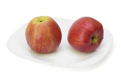 在牌照的二个红色苹果。 免版税库存图片