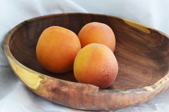 在牌照的杏子 免版税库存图片