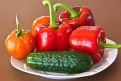 在牌照的蔬菜 图库摄影