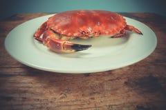 在牌照的螃蟹 免版税库存照片