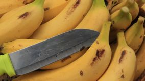 在牌照的香蕉 股票视频