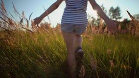 在牛仔布短裤打扮的女孩审阅干燥金黄草 股票视频