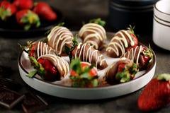 在牛奶和白色巧克力的可口新鲜的草莓 库存图片
