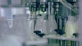 在牛奶工厂的制造过程 乳品加工业 自动化的生产线 股票视频