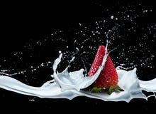 在牛奶飞溅特写镜头的草莓 库存照片