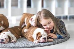 在牛头犬之间一只小女孩和逗人喜爱的小狗的友谊  免版税库存照片