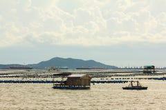 在牡蛎fram旁边的议院浮游物 免版税库存图片