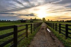 在牧场地之间的国家车道 免版税库存图片