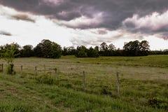 在牧场地的暴风云 库存图片