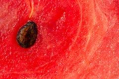 在特写镜头的红色西瓜 库存照片