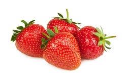 在特写镜头的草莓 图库摄影