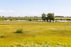 在特切夫,波兰附近的维斯瓦河 库存图片