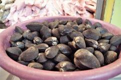 在特古西加尔巴异乎寻常的食物curles的传统海鲜市场显示 免版税库存照片