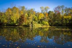 在特拉华和Raritan运河的秋天反映 图库摄影
