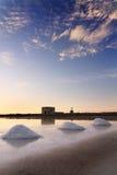 在特拉帕尼,西西里岛附近的盐矿 库存图片