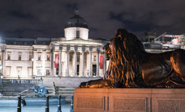 在特拉法加广场伦敦的著名狮子在晚上 免版税库存照片