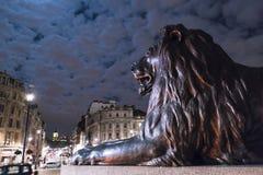 在特拉法加广场伦敦的著名狮子在晚上 免版税库存图片