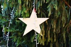 在特雷维索,意大利,葡萄酒颜色担任主角装饰和圣诞树 免版税库存图片
