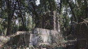 在犹太公墓的照相机幻灯片有matzevah的 股票视频