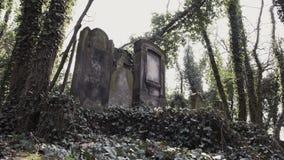 在犹太公墓的照相机幻灯片有matzevah的 股票录像