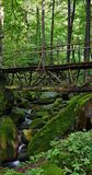 在狂放的小河的木桥 免版税库存图片