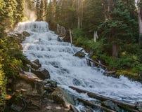 在狂放的山小河的快速的水小河在Joffre湖省公园绿色森林风景 库存图片